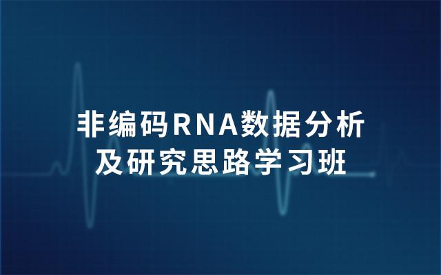 2019非编码RNA数据分析及研究思路学习班(8月广州班)