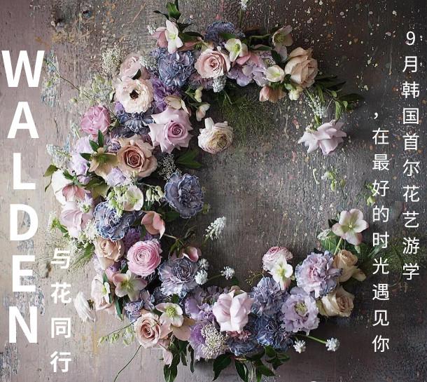 WALDEN与花同行|9月韩国首尔花艺游学,在最好的时光遇见你