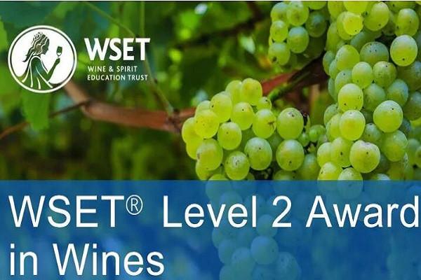 鼎酩学院WSET葡萄酒二级课程(9月厦门班)