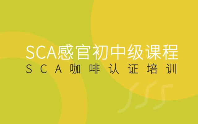 2019SCA感官初中级课程(11月深圳班)