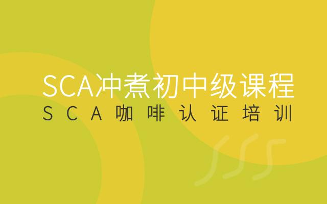 2019SCA冲煮初中级课程(10月深圳培训班)