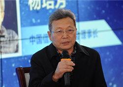 中国信息经济学会理事长杨培芳照片