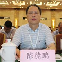 國網南昌供電公司副總經理陳德鵬照片