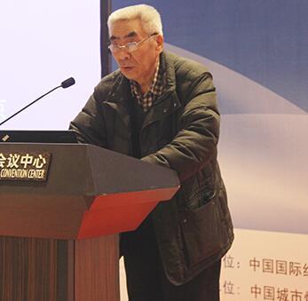 中国城市规划协会副会长任致远照片