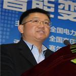许继电气股份有限公司总工程师易永辉照片