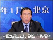 中国煤炭工业协会副会长路耀华照片