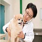 中國農業大學動物醫學院獸醫碩士張志紅照片