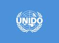 联合国工业发展组织