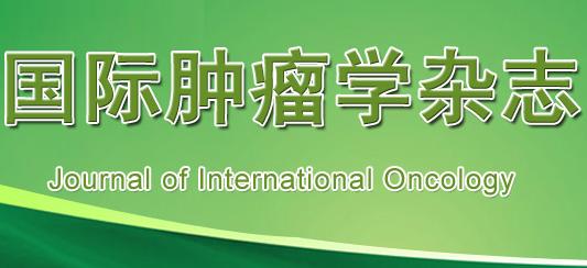 《国际肿瘤学杂志》