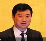 中国工程机械工业协会副会长兼秘书长苏子孟照片