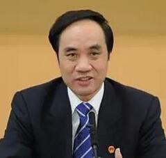 人大财经委员会副主席辜胜阻照片