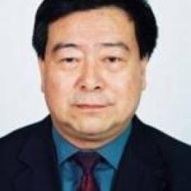 中國可再生能源學會理事長Shi Dinghuan照片