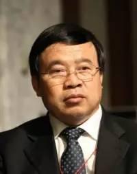 国务院发展研究中心对外经济研究部  部长赵晋平  照片