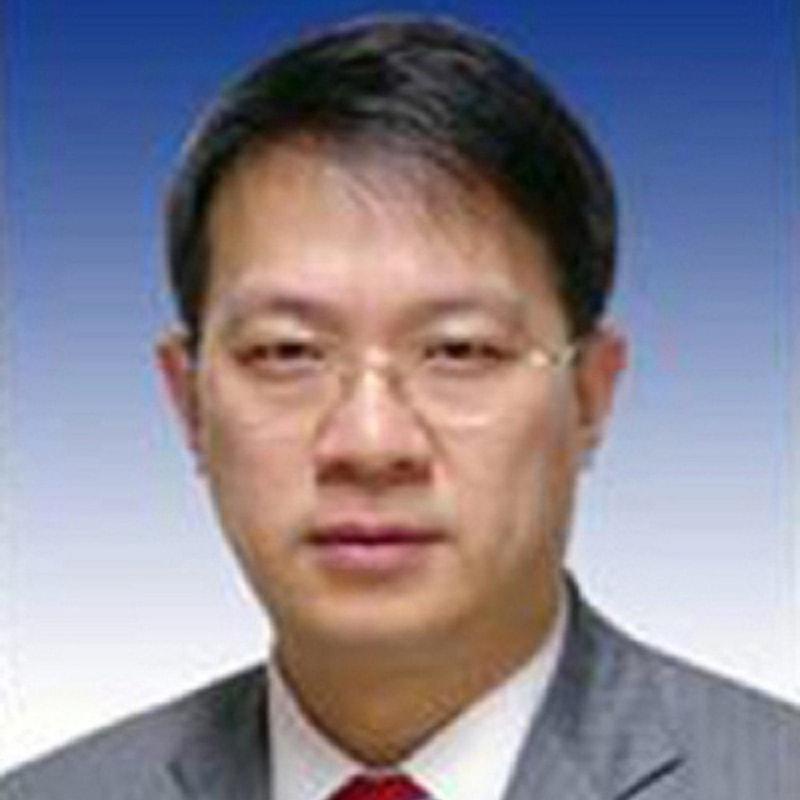 中国文化产业投资基金总裁陈杭照片