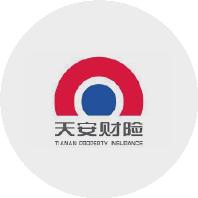 董事长天安财产保险股份有限公司洪波照片