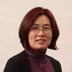 红杉资本董事总经理杨云霞