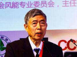 世界风能协会轮值主席中国风能协会理事长贺德馨照片