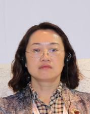 徐工集团进出口有限公司副总经理张岩梅照片