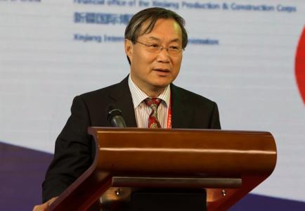 中国丝路基金会主席杨泽军照片