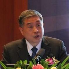 中国光伏行业协会秘书长王勃华照片