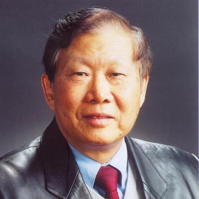 中国工程院院士王梦恕