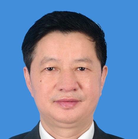 深圳市地铁集团有限公司总工程师陈湘生照片