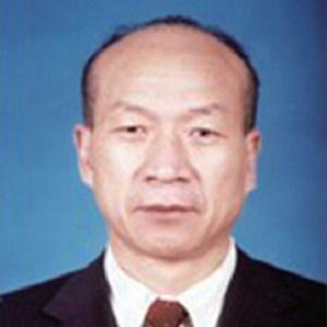 中国建筑业协会副会长吴涛照片