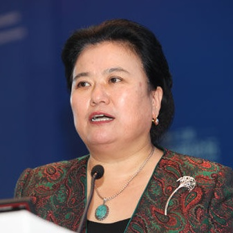国家科技部火炬中心副主任修小平