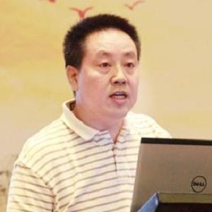 中国冶金矿山企业协会常务副会长雷平喜
