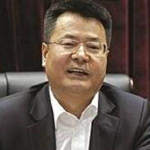 天津临港经济区管理委员会主任王国良照片