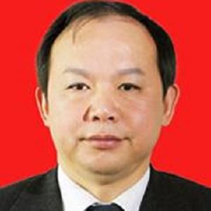 中建三局董事长、党委书记陈华元照片