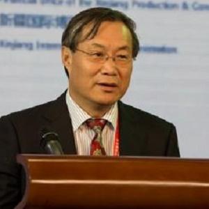 中国丝路基金会主席杨泽军