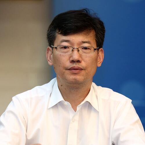 国家中医药管理局国际合作司副司长吴振斗照片