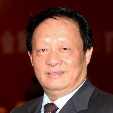 中国工程院院士欧阳平凯照片
