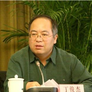 国家广告研究院院长丁俊杰照片