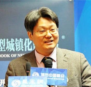北京大学首都发展研究院副院长、中国区域科学协会秘书长沈体雁