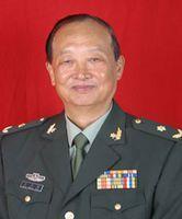 中国工程院院士王正国