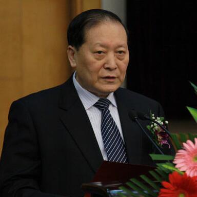 世界生产力科学联盟董事陈胜昌照片