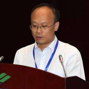 中航工业经济技术研究院院长助理陈少军照片