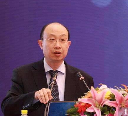 对外经济贸易大学国际经贸学院教授王健照片