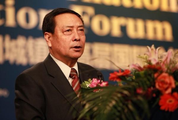 中央財經領導小組辦公室副主任陳錫文照片