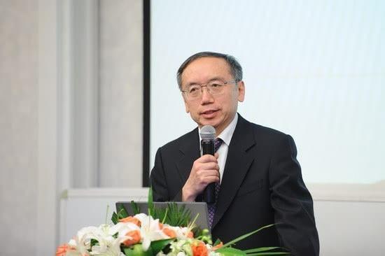 中国改革基金会国民经济研究所副所长王小鲁照片