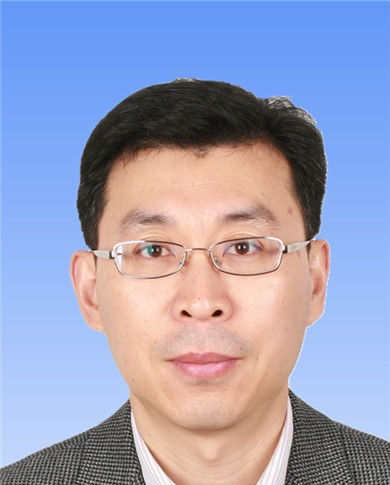 国务院发展研究中心企业研究所副所长张永伟照片