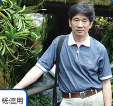 中关村自主品牌创新发展协会会长杨信用照片
