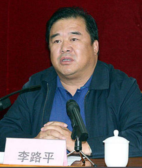 卫生计生委基层卫生司副巡视员李路平照片