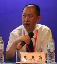 清华大学建筑学院教授陈志华