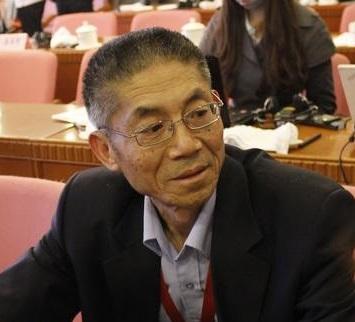 中国汽车工程学会专家主任 陈一龙照片