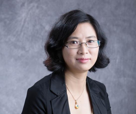 广东省商业美术设计行业协会软装设计专业委员会主任刘敬华照片