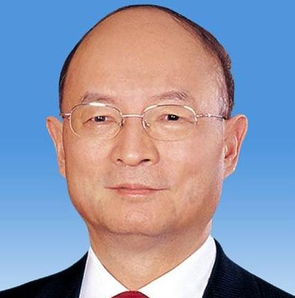 全国政协副主席陈元