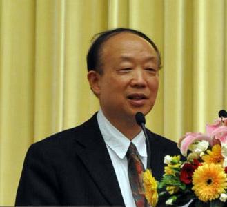中国市场学会副会长丁俊发照片